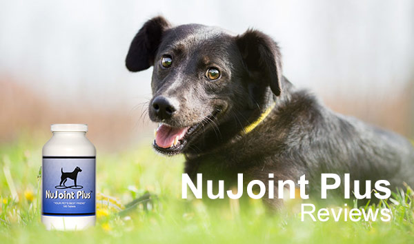 nujoint-plus-reviews