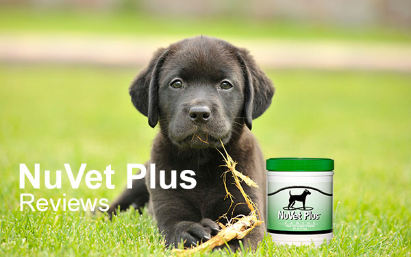 nuvet-plus-reviews